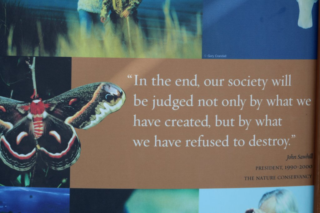 The Nature Conservance Quote