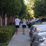 Davis MOO-nlight Half Marathon – Race Report!