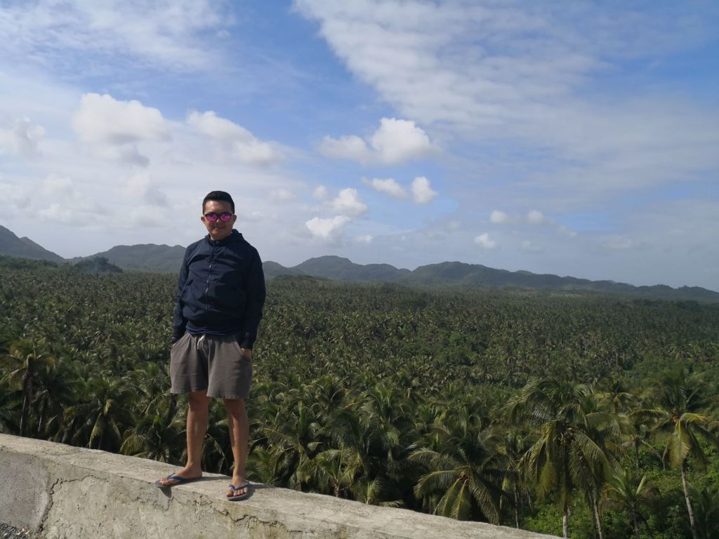 The famous concentrated coconut trees in Siargao