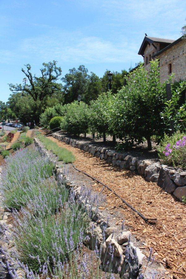 A kitchen garden at Greystone