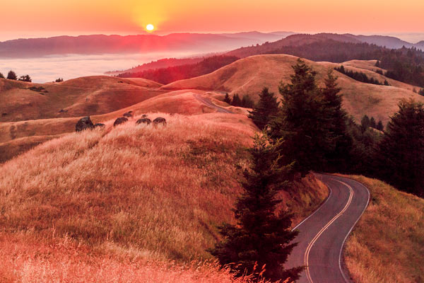 Highway 1 Coast