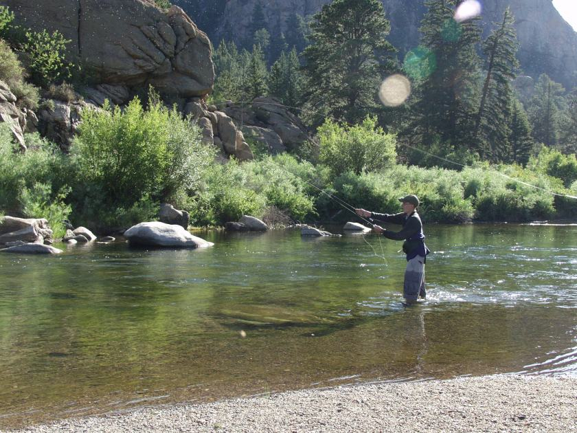 Fly fishing the Tarryall.