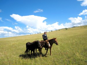 becky-horses