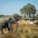 Kwai Camp - Safari Vehicle & Elephant