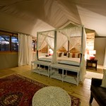 Toka Leya Camp - Guest Room