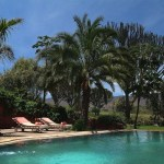 Chui Lodge - Swimming Pool