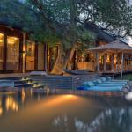 Phinda Homestead - Lodge and Pool