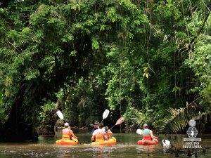 Kayaking at Torguguero Costa Rica