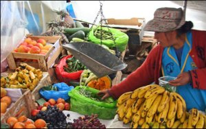 Cost Of Sacred Valley Tour Private Guide