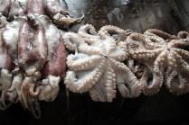 20160814-tz-zanzibar-stone-town-fish-market-5-large