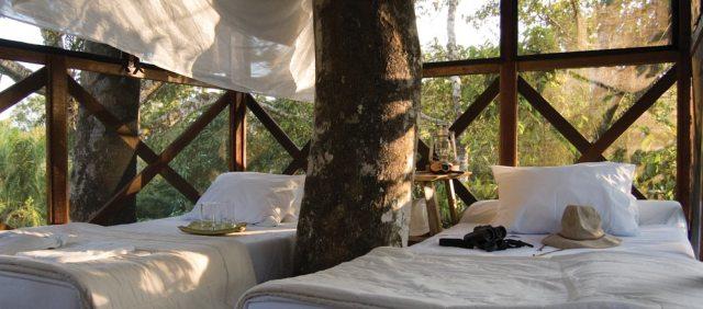 Amazon Tree house