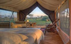 serengeti-under-canvas-tent-1