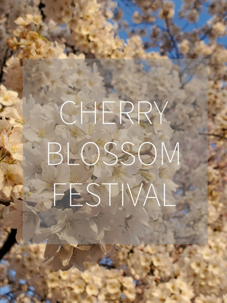 Cherry Blossom Festival DC | Adventures with Shelby