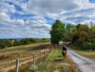 Horseback Riding Trail   Adventures with Shelby