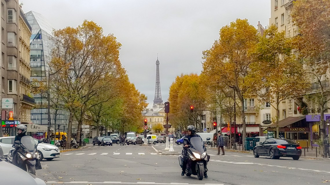 Paris in the Fall   Adventures with Shelby