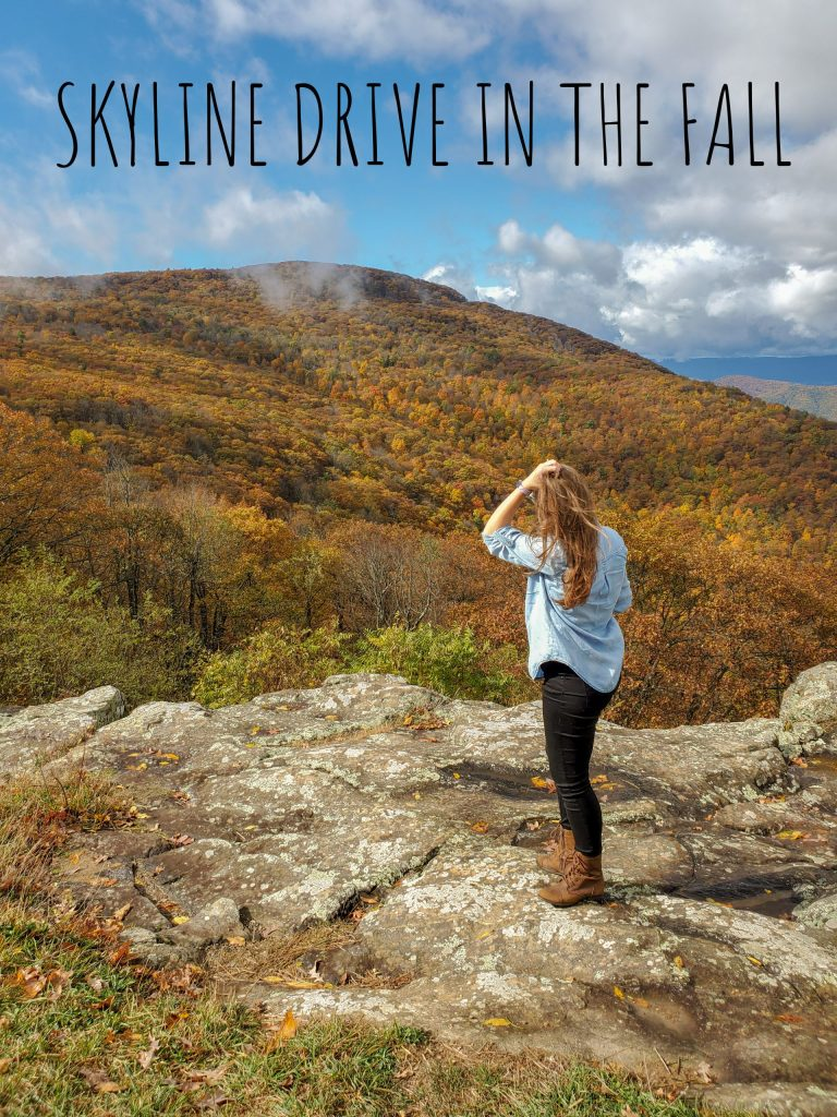 Skyline Drive in the Fall, Virginia | Adventures with Shelby