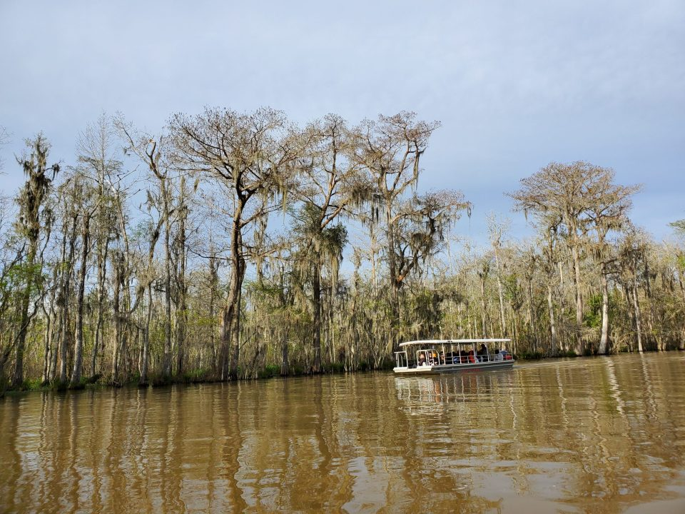 Honey Island Swamp, Louisiana | Adventures with Shelby