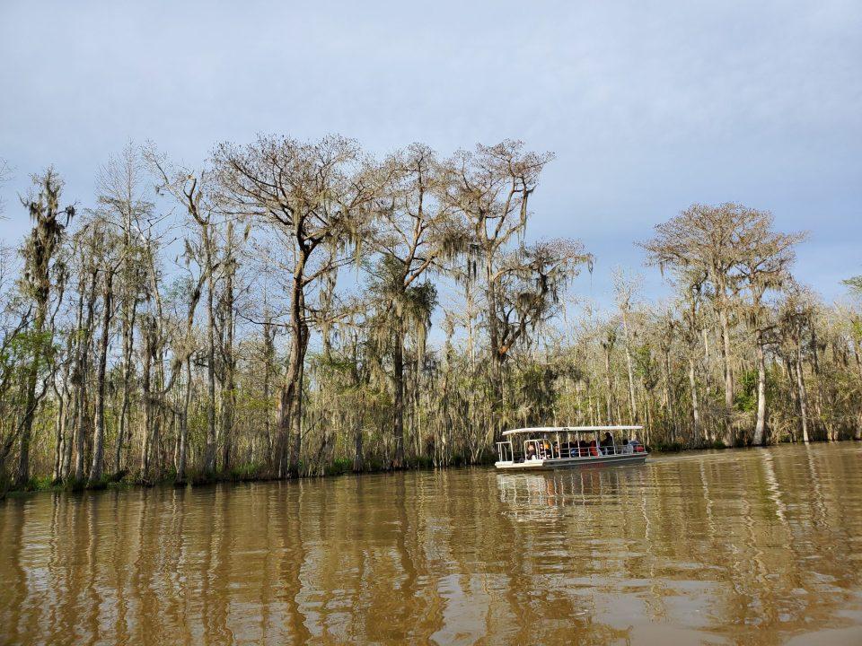 Honey Island Swamp, Louisiana | Adventures with Shelby