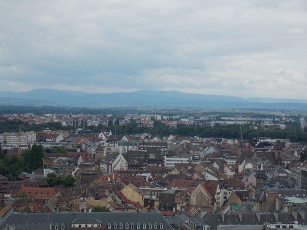 View from Notre Dame in Strasbourg | Adventures with Shelby