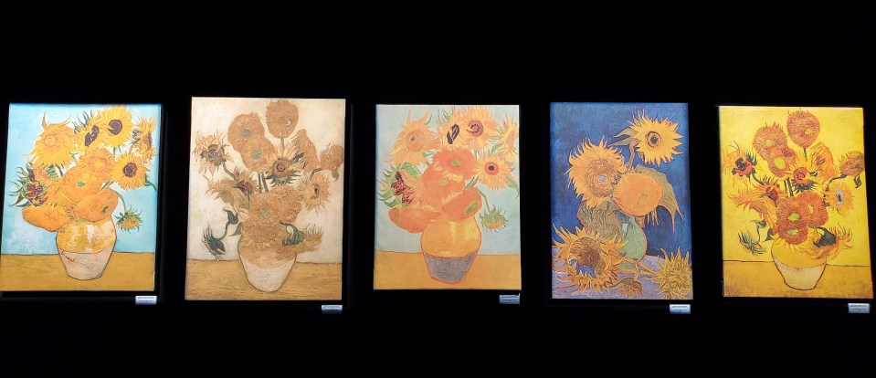 Van Gogh Immersive Experience : Sunflowers   Adventures with Shelby