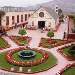 Museo de Neurología del Perú