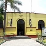 Museo de Historia Natrual - Cusco- Perú
