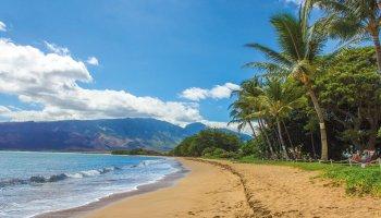 Hawaii Island Tour