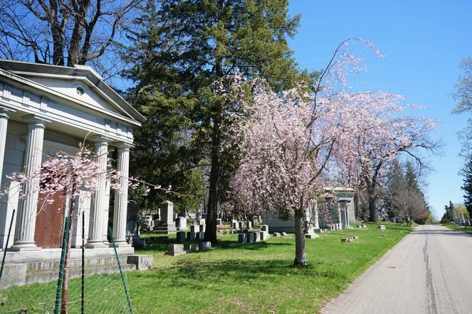 This view can be seen on Grove Avenue where there are many mausoleums erected.