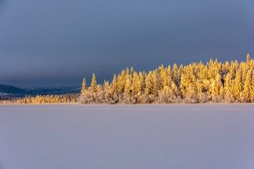 Decemberljus på turskidor i Åre, turskidguidning i Åre