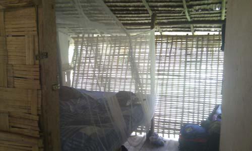Inside Jungle Lodge