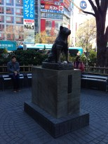 Hachiko. Someone left him a rice ball or something.