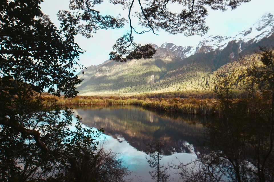 mirror lake  things to do in fiordland national park mirror lake new zealand south island new zealand