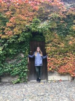 Pretty Vines at the Castle
