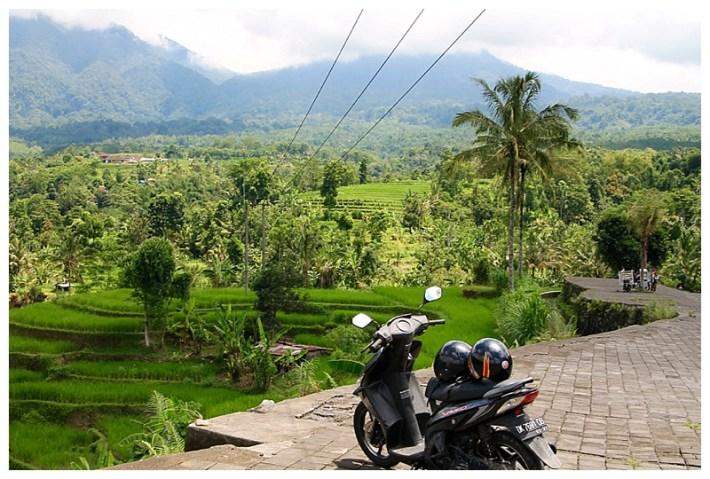 Bali-Motorbike-View