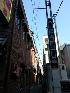 view of Skytree through a small street in Asakusa