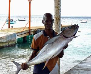 Buy fresh fish in Curacao - here is a good catch