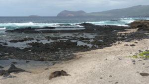 Galapagos a Bucket List Trip