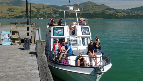 Akaroa New Zealand - Coast Up Close Boat