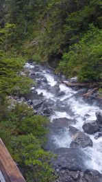 TranzAlpine Scenic Railway - Turbulent waters downstream of Devils Punchbowl at Arthur's Pass