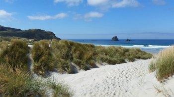 Otago Sandfly Bay