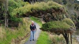 Stewart Island Coastal Track