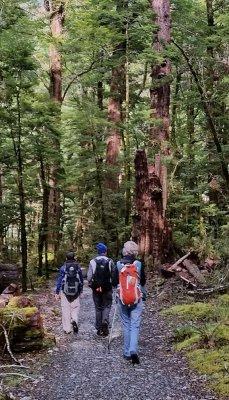 Routeburn Track hike