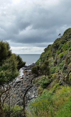 Stewart Island ocean view