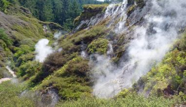 Thermal steam vents near Taupo