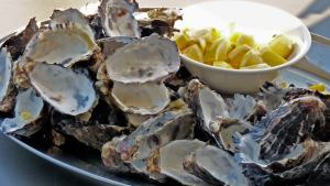 Oyster snack on Wineglass Bay Cruises