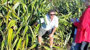 Taranaki Tours Tom Parsons describes Maori use of plants