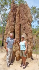 Giant termite mound in Litchfield National Park, Northern Territory, AU