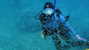 Ningaloo Reef & Muiron Islands, Exmouth Underwater World