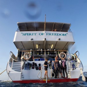 Dive platform Spirit of Freedom, image credit Sola Hayakawa