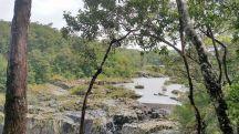 Top of Barron Falls